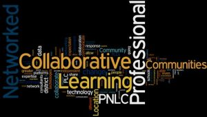 Professional learning programs
