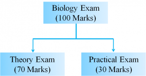 get a full marks in Biology Class 12